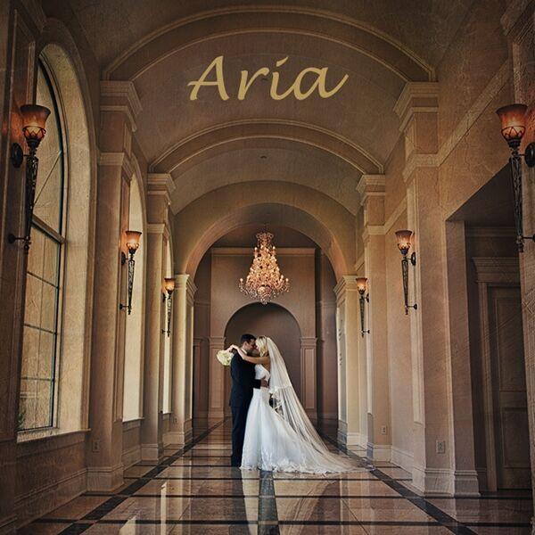 aria wedding banquet facility prospect ct
