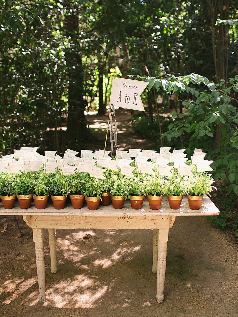 Plantes en pot pour une idée de faveur de mariage rustique