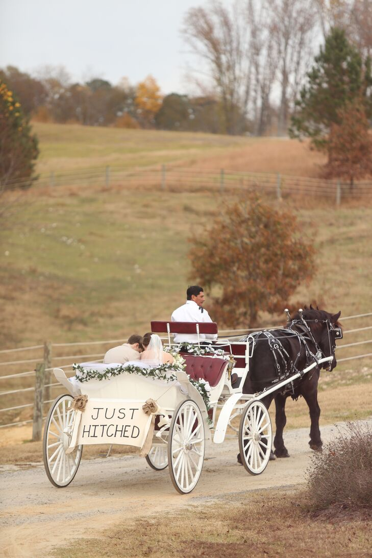 Horse-Drawn Carriage Wedding Transportation