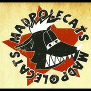 Madison, WI Variety Band | MadPolecats