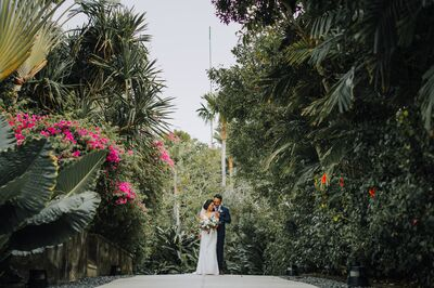Maui Love Weddings and Events