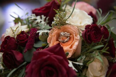 Florists In South Bend In The Knot