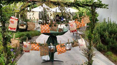 The Tangerine Food Company