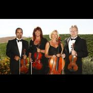 Fallbrook, CA String Quartet | Strings For Your Heart