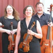 Somersworth, NH String Quartet | Artful Noise String Quartet