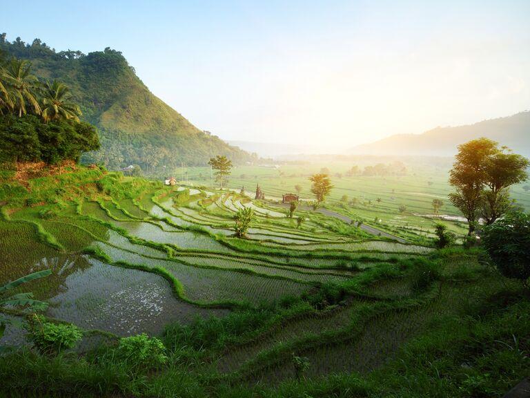 Bali Indonesia Honeymoon Weather And Travel Guide