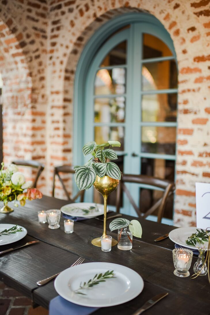 Simple Table Setting With Olive Sprigs