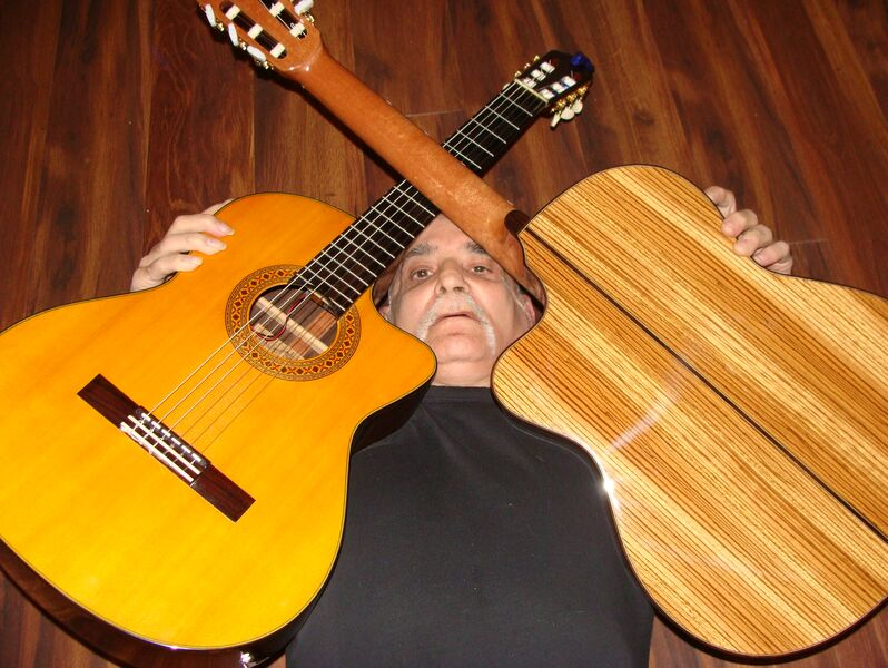 Guitar Sensations - Classical Guitarist - Harrison Township, MI