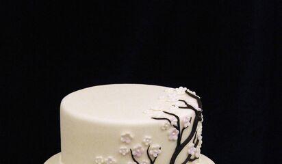 Mikes Amazing Cakes