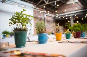 Potted Plant Centerpieces in Ceramic Vases