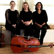 Harrisonburg, VA String Quartet | The Bloom Trio