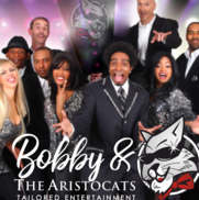 Nashville, TN Cover Band | Bobby and The Aristocats