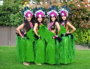 Sacramento, CA Hula Dancer | Aloha Polynesia! Hawaiian Band & Dancers.