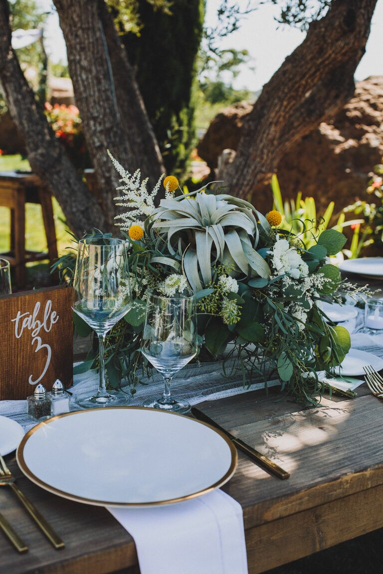 Centerpiece with rustic air plant