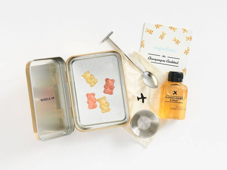 Airplane cocktail kit gift for daughter-in-law