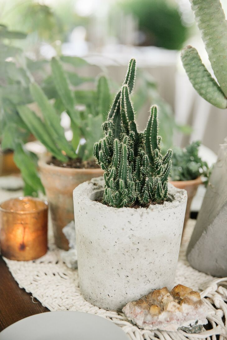Bohemian Cactus Centerpiece with Macrame Runner
