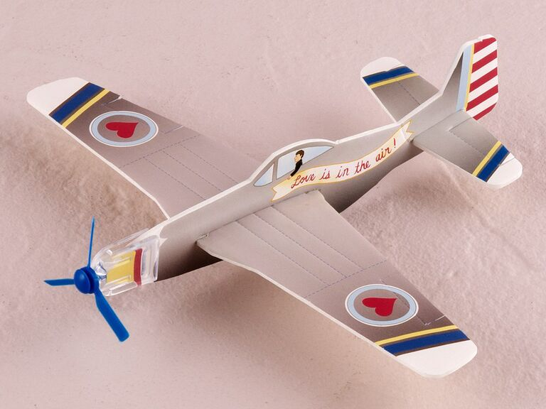 Novelty airplane wedding favor