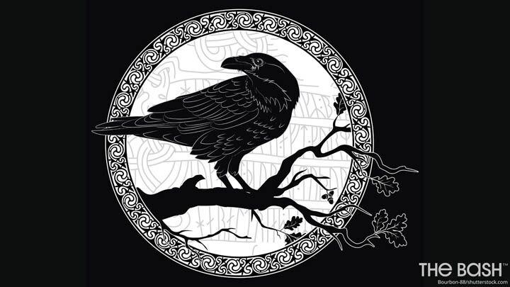 Halloween Zoom Background - Black Raven