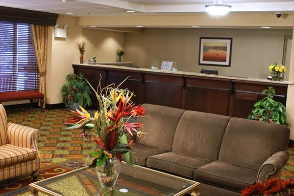 Homewood Suites By Hilton Baltimore Bwi Airport