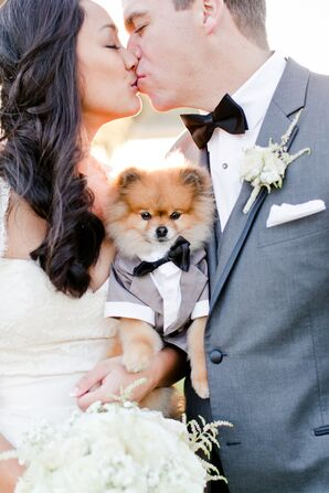 Dog in Gray Tuxedo and Bow Tie