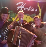 Orlando, FL Variety Band | Herbie and the Gators Zydeco Cajun Blues Live Band