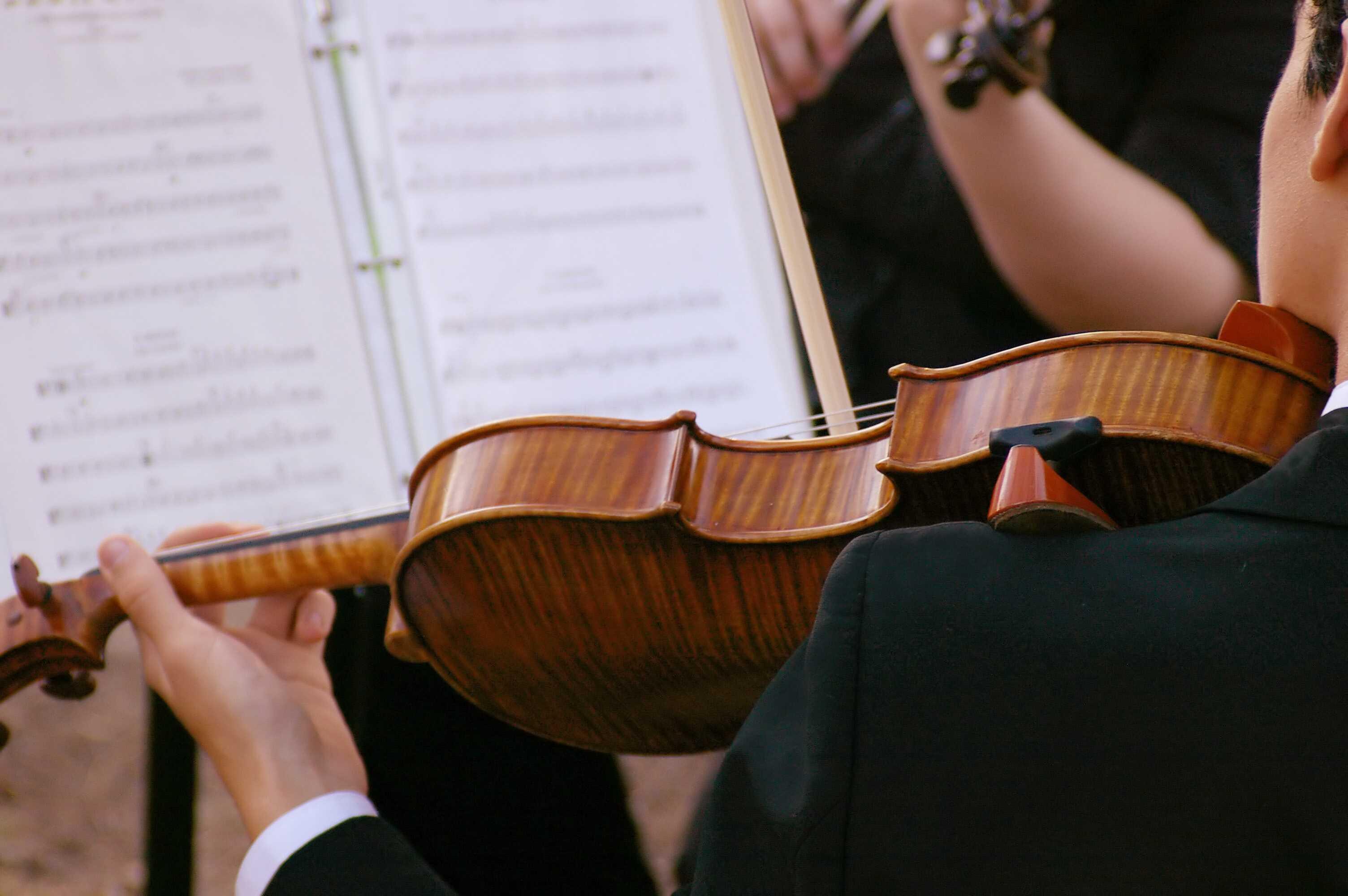 violin-istock