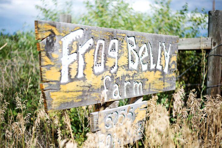 Frog Belly Farm in Longmont, CO