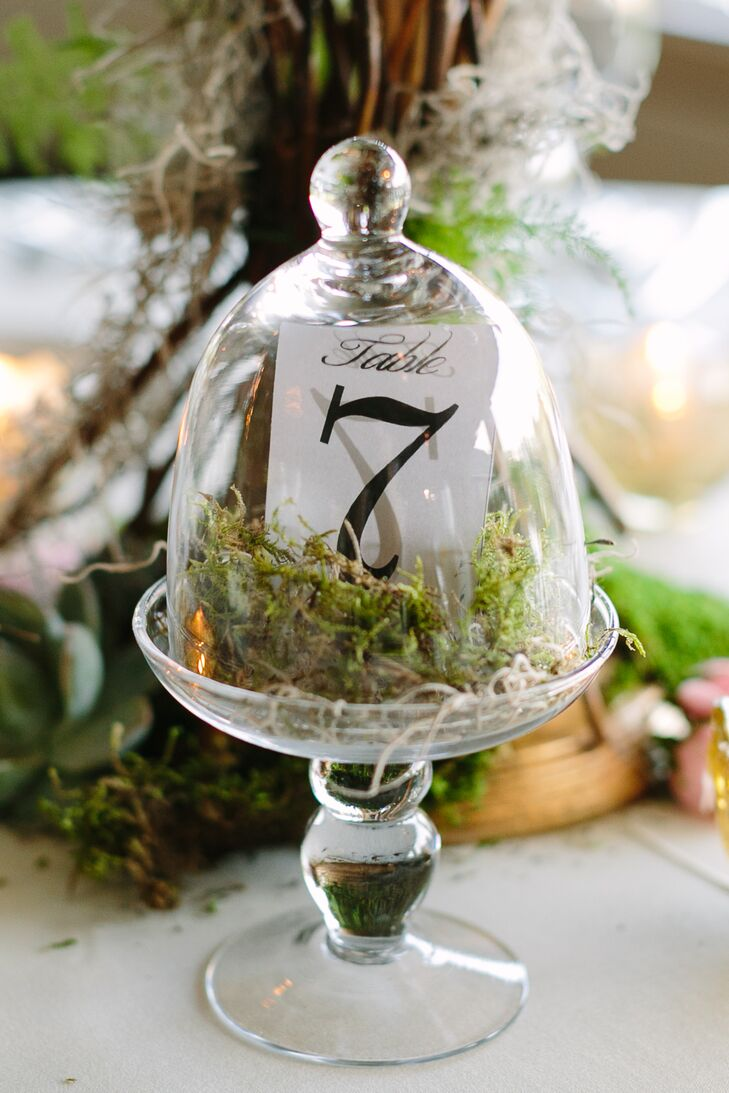 Moss Bell Jar Table Numbers