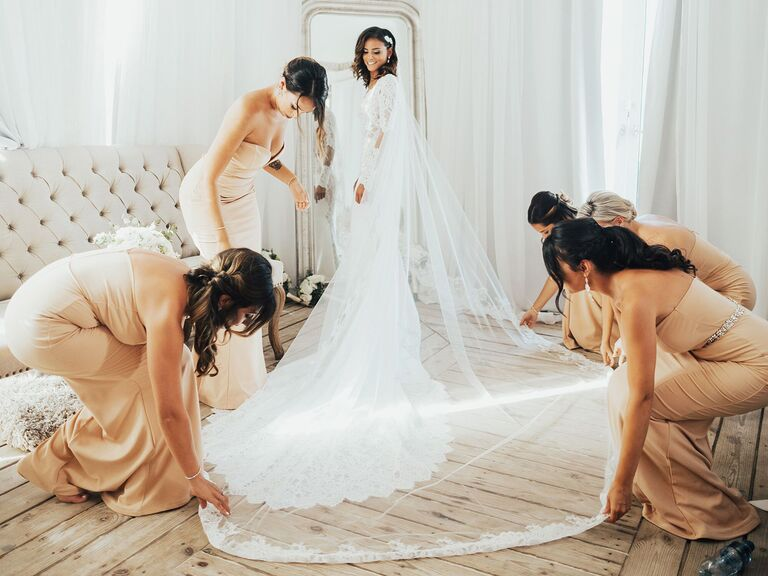 Bride in wedding dress with bridesmaids