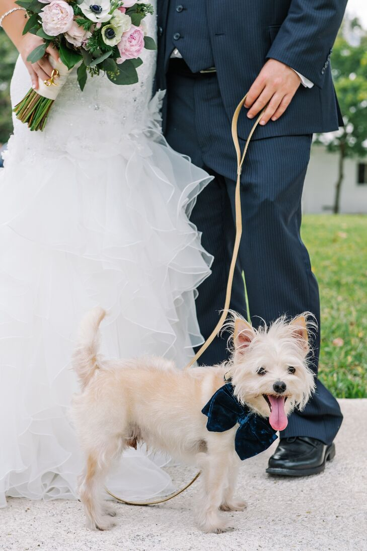 """The couple's dog, Papa Louie (who was also present for the proposal!), served as a combination of """"best dog"""" and ring bearer. The fury friend donned a vintage navy bowtie and a gold collar both from Etsy."""