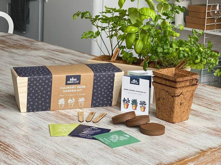 Long-distance dad gift indoor garden