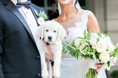 Wedding Day Dash