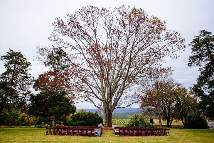 Ceremony with Vineyard Views in Charlottesville