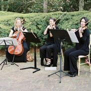 Kennesaw, GA String Quartet | Lark Chamber Music