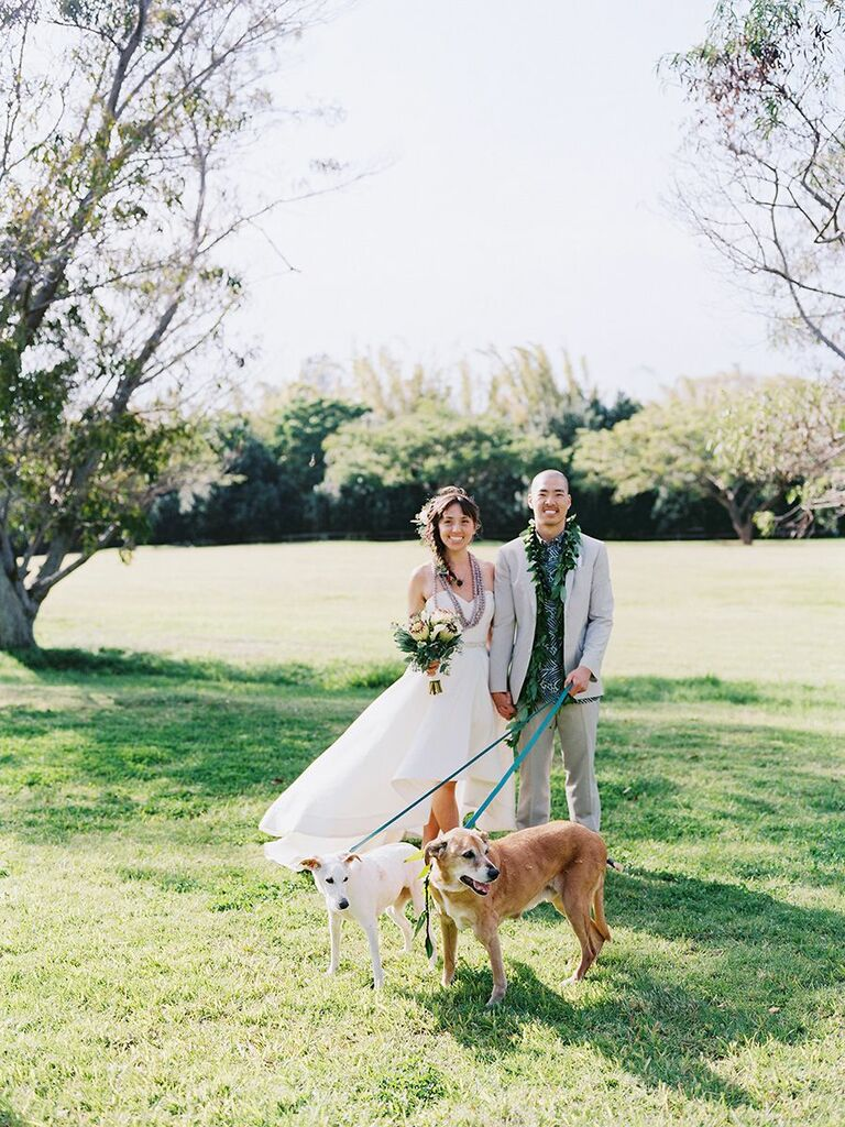 bride and groom with their dogs Hawaii