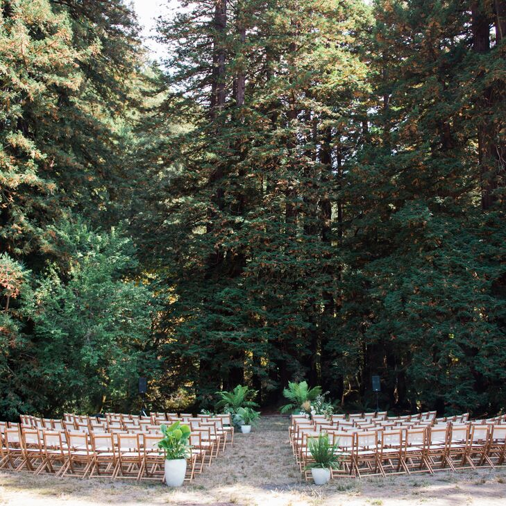 Intimate Redwood Forest Ceremony