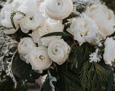 Sofie's Blooms