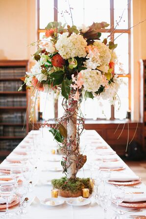Tall Natural Birch Centerpieces with Hydrangeas, Pincushion Proteas, and Orchids