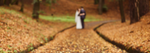 Ask the Experts: Fall Wedding Colors