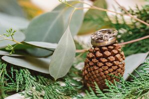 Wedding Rings Atop a Winter Pinecone