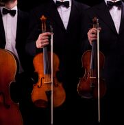 New York City, NY String Quartet | Consonance Music Ensembles