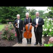 Providence, RI Classical Quartet | Allegro Chamber Players