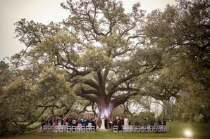 Outdoor Ceremony Under an Oak Tree