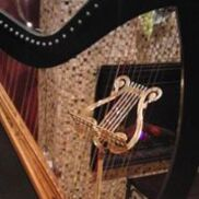 Grand Forks, ND Celtic Harp | Sally Morris - the Magical Harp