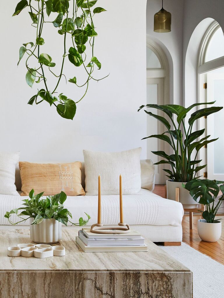Houseplant subscription for couples
