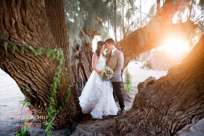Ivory Orchid Photography & Storybook Design