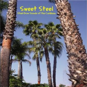 Dallas, TX Steel Drum Band | Sweet Steel - Steel Drum Band