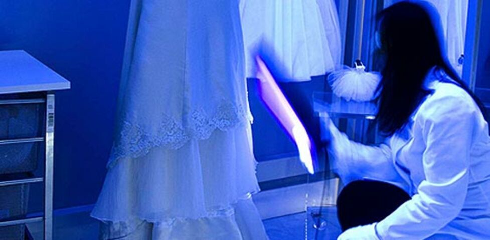 Davis imperial cleaners inc chicago il for Wedding dress preservation chicago