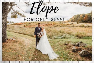 Picture This Wedding: Elope for $899