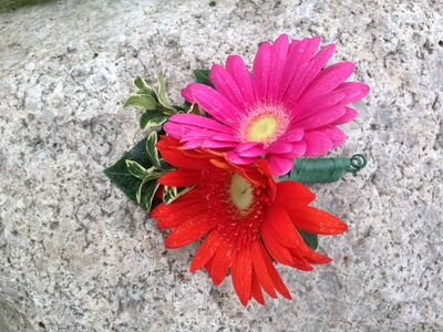 St. Ignace In Bloom | Greenhouse & Florist